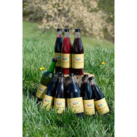 Brombeer Muttersaft 0,5L