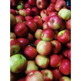 Äpfel (Jonagold) 1kg