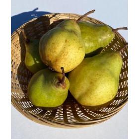 Birnen (Packhams) 1,5kg