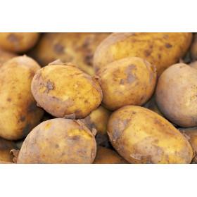 Frühkartoffeln 1kg